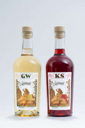 Roner vermouth-coppia (2)