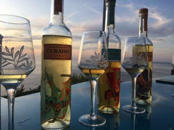 Degustazione delle tre tipologie di Tequila Blanco Curado: Blue Agave, Espadin e Cupreata.