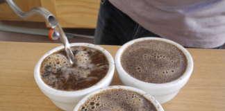 Preparazione delle tazze per il cupping