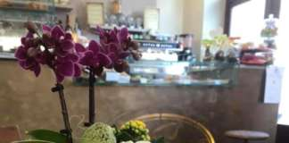 Il buongiorno al Flower Bar