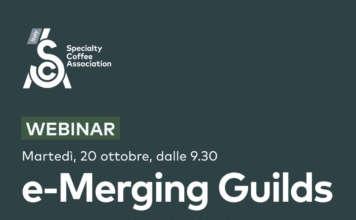 e-Merging Guilds