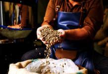 caffè carbon neutrality