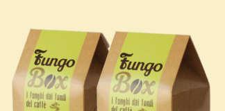 Fungo Box